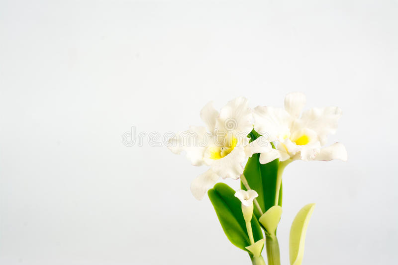 ORCHID Flower Plant in Pot Dollhouse Miniatures Garden royalty free stock photography