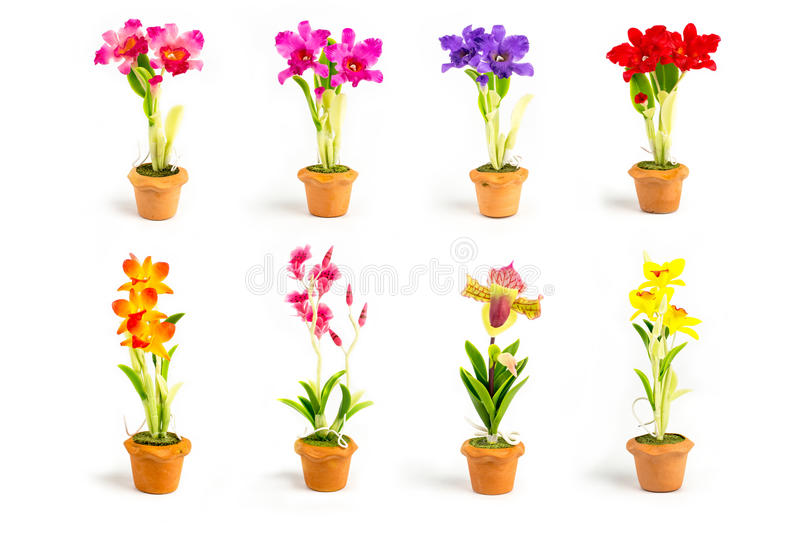 ORCHID Flower Plant in Pot Dollhouse Miniatures Garden royalty free stock photos