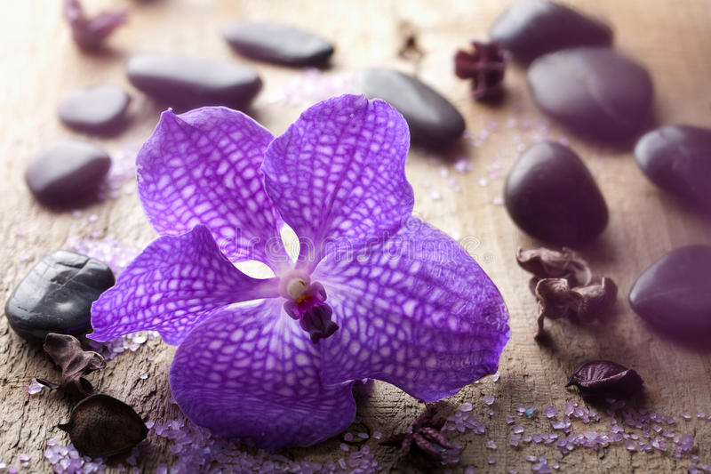Download Orchid Flower For Spa Stock Images - Image: 26539224