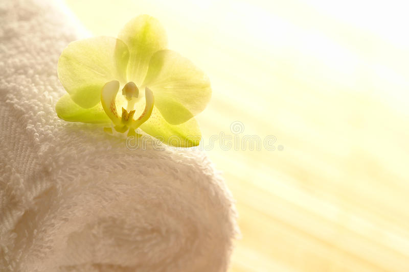 Orchid Flower On Spa Towel In High Key Mood Royalty Free Stock Photos