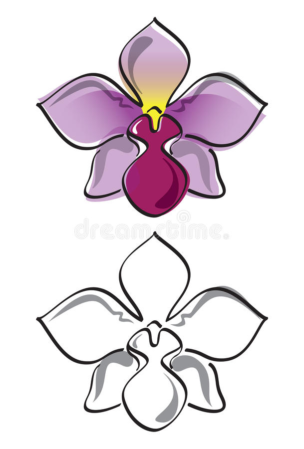 Download Orchid flower vector stock vector. Illustration of exotic - 20910304