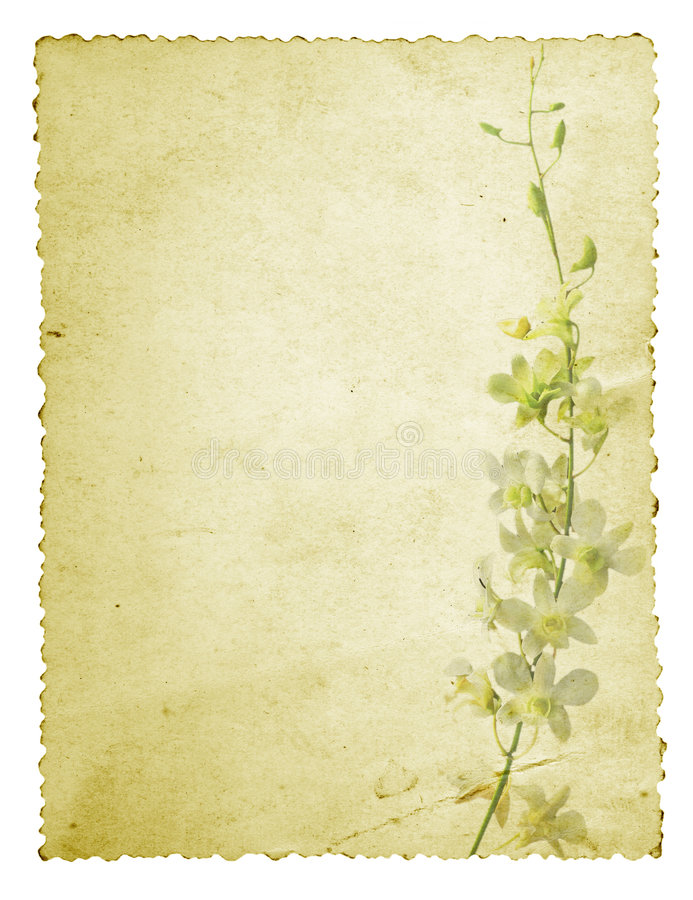 Download Orchid Grunge Card stock illustration. Illustration of isolated - 7281857
