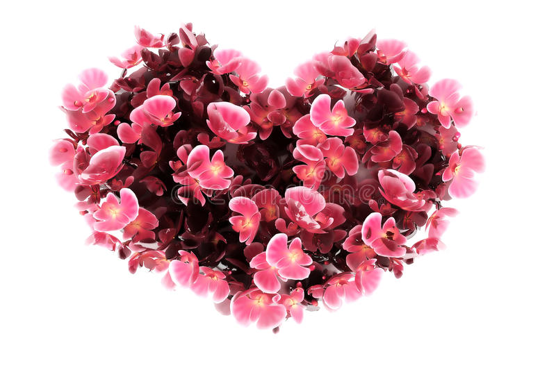 Orchid heart royalty free stock image