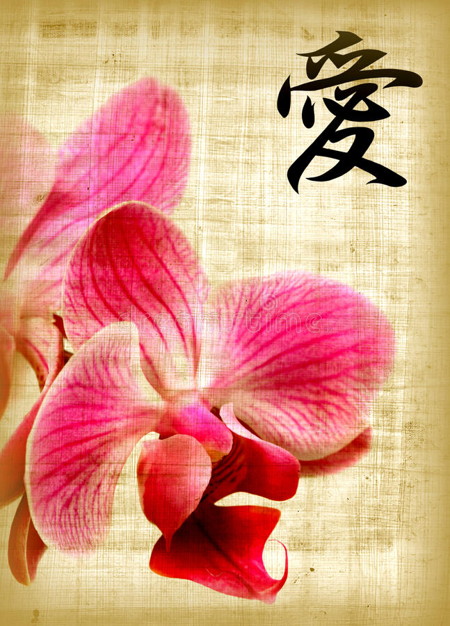 Orchid and hieroglyph love royalty free stock image