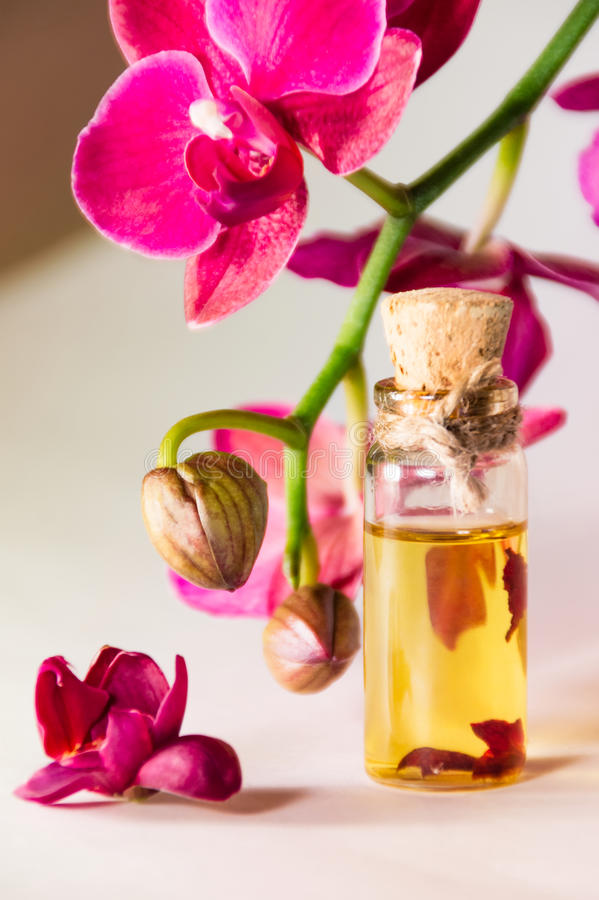 Download Orchid and oil stock photo. Image of female, means, vial - 40120912
