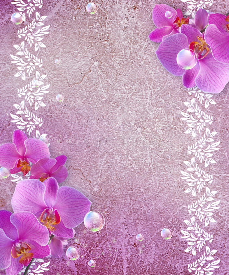 Download Orchid and openwork frame stock illustration. Image of blank - 25476274