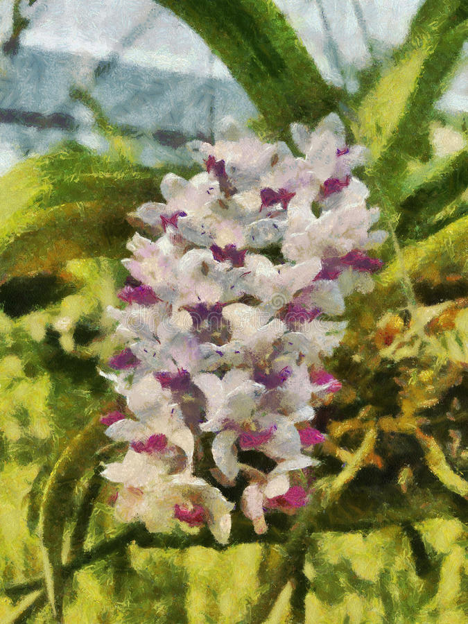 Orchid painting stock image