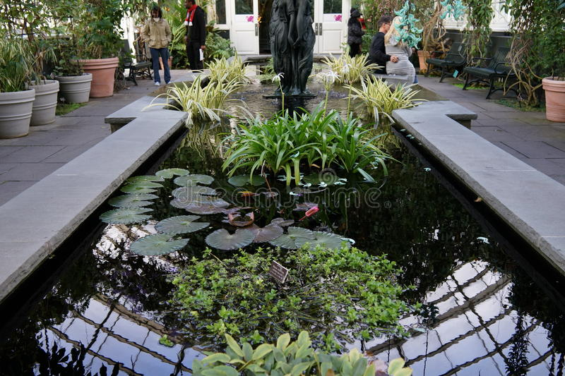 The 2016 Orchid Show 25. More thrilling than ever, the 14th annual Orchid Show transports visitors on a journey through orchid collecting history, each moment stock images