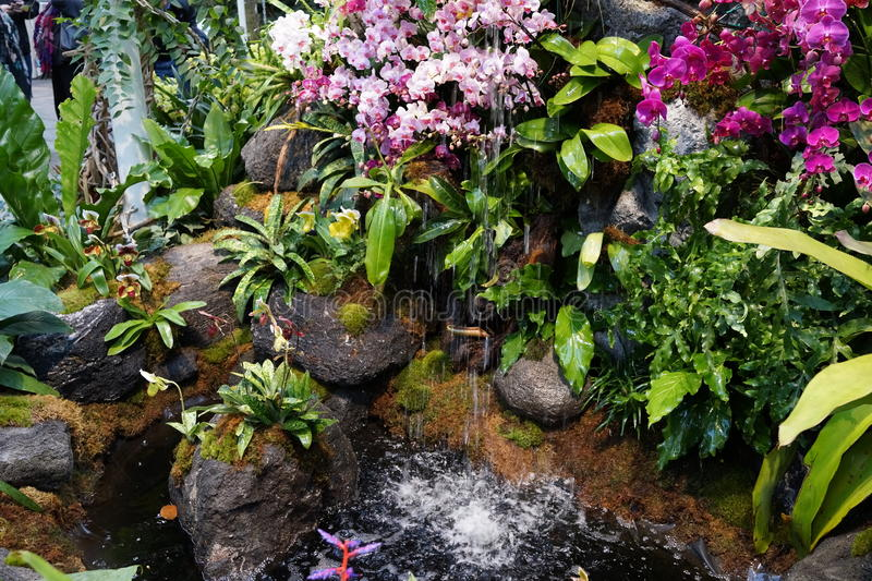The 2016 Orchid Show 64. More thrilling than ever, the 14th annual Orchid Show transports visitors on a journey through orchid collecting history, each moment stock photo