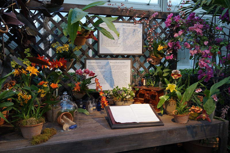 The 2016 Orchid Show Part 2 28. More thrilling than ever, the 14th annual Orchid Show transports visitors on a journey through orchid collecting history, each stock photos
