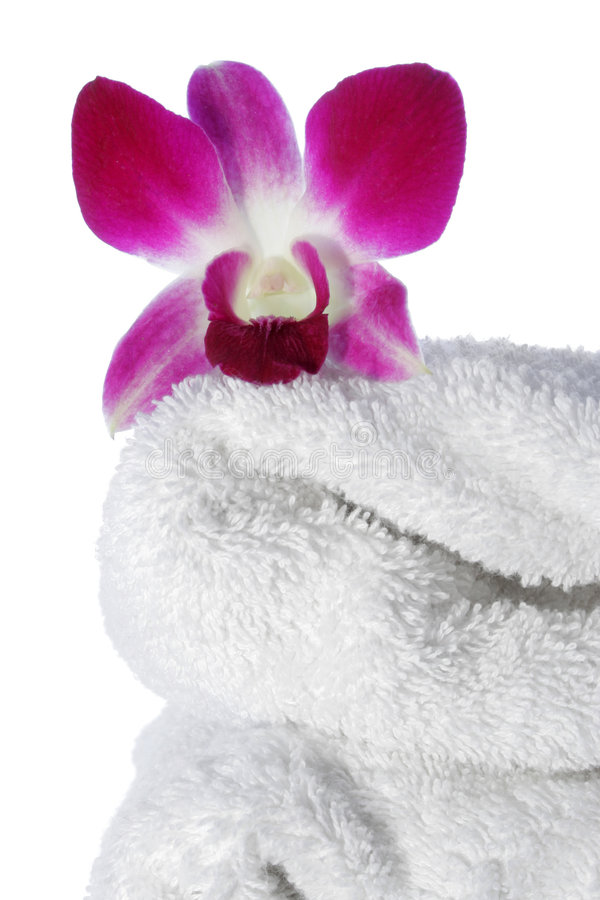 Download Orchid On Towel Royalty Free Stock Image - Image: 511656