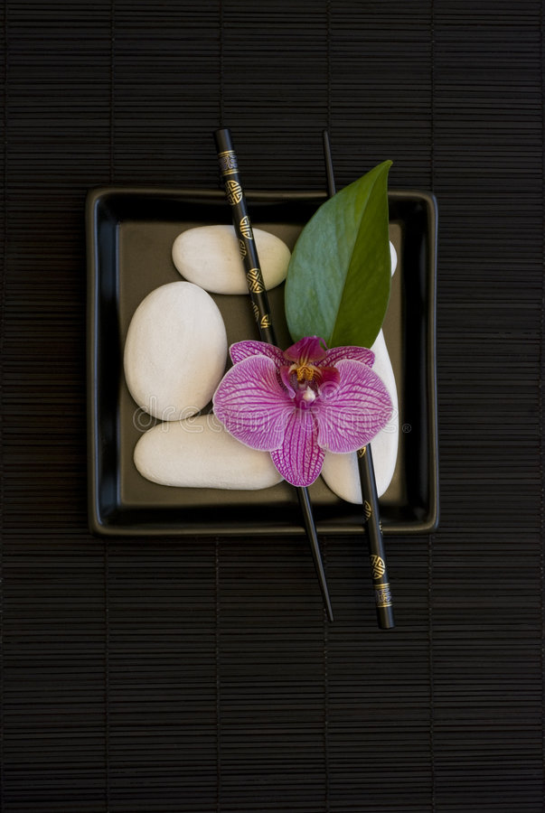 Download Orchid and white pebble stock image. Image of object, stone - 8134037