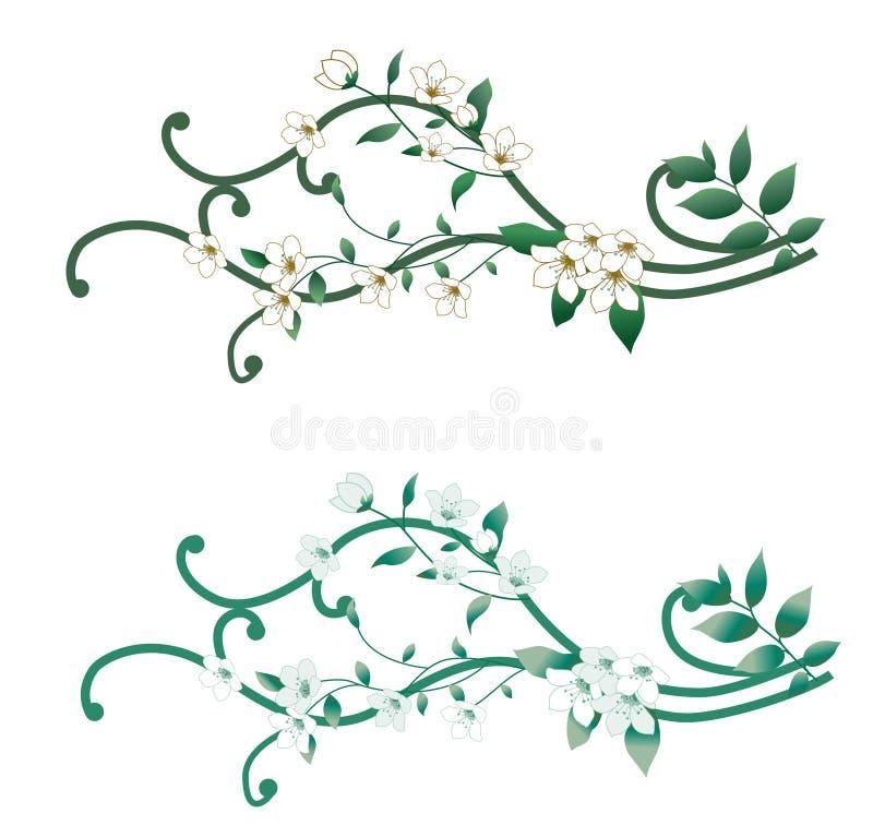 Orchidea illustrazione di stock