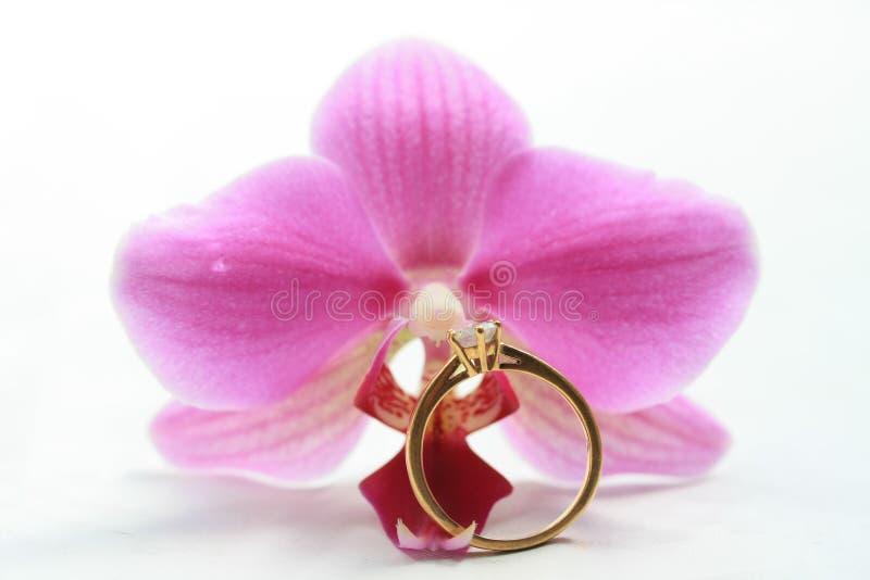 Orchidea e anello di fidanzamento dentellare del solitaire immagine stock