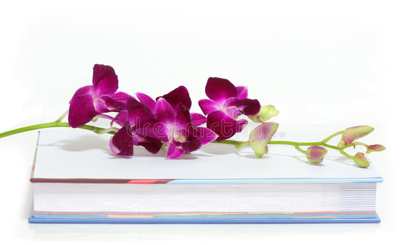 Orchidea e libro immagini stock
