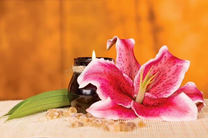 Orchidea i świeczka fotografia stock
