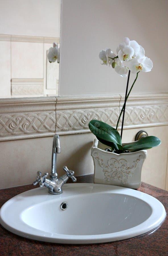 Orchidea Nella Stanza Da Bagno Fotografia Stock - Immagine di ...