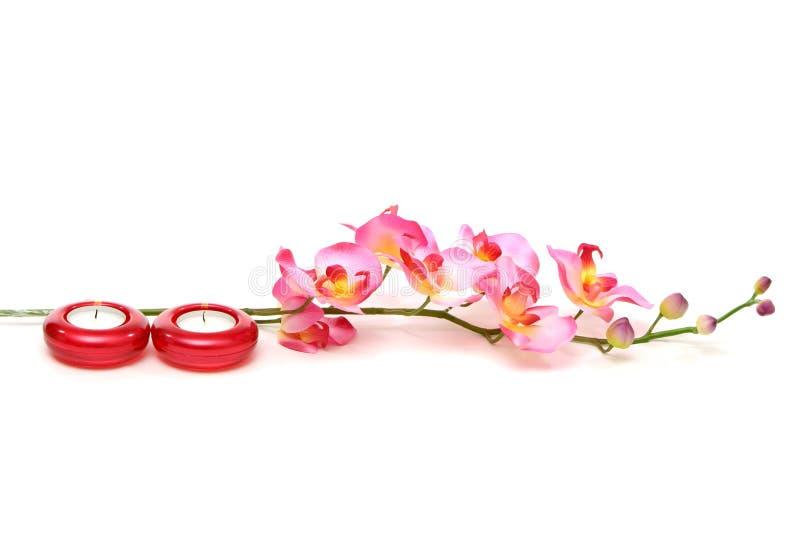 orchidea spa świece. zdjęcie stock