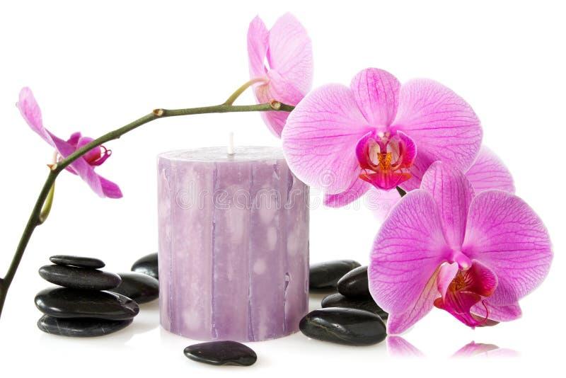 orchidee aromatische kerze und schwarze steine stockfotos. Black Bedroom Furniture Sets. Home Design Ideas