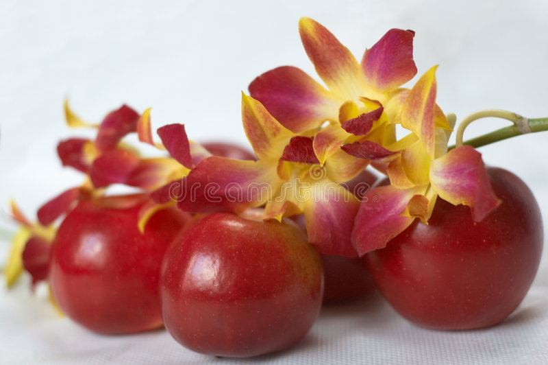 Orchidee auf roten Äpfeln stockbilder