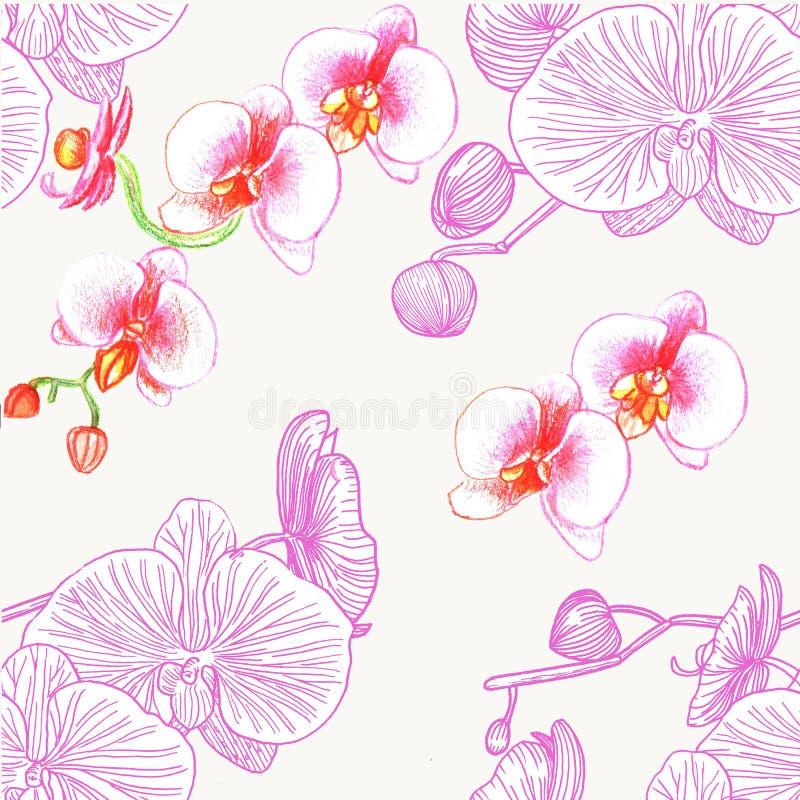 orchidee deseniują bezszwowego akwarela royalty ilustracja