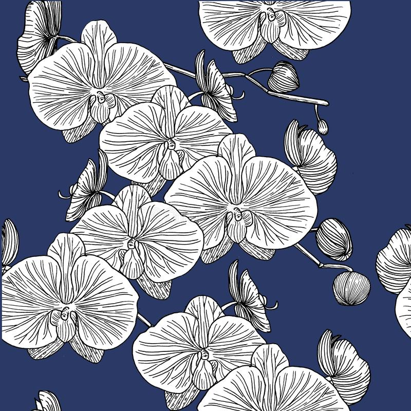orchidee deseniują bezszwowego ręka patroszona ilustracja wektor