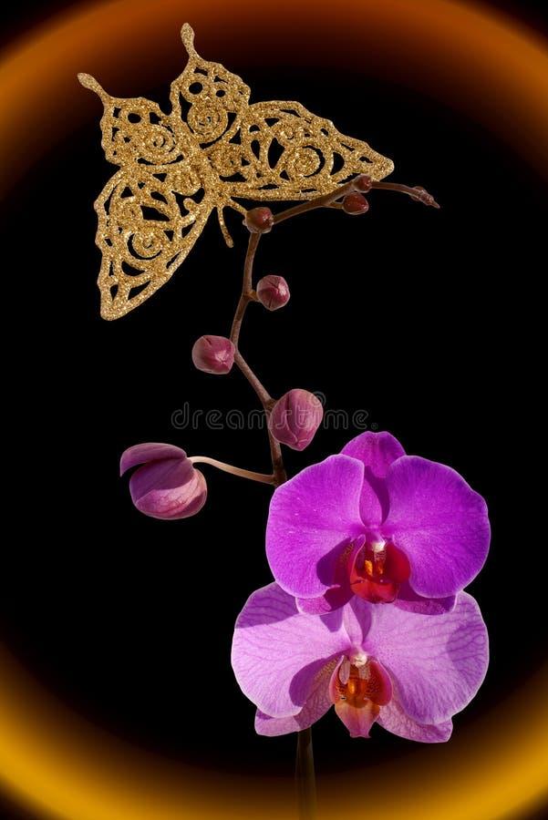 Orchidee en gouden vlinder stock foto