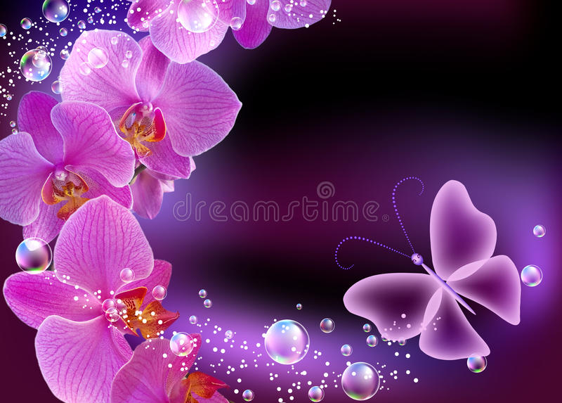 Orchidee en vlinder stock illustratie