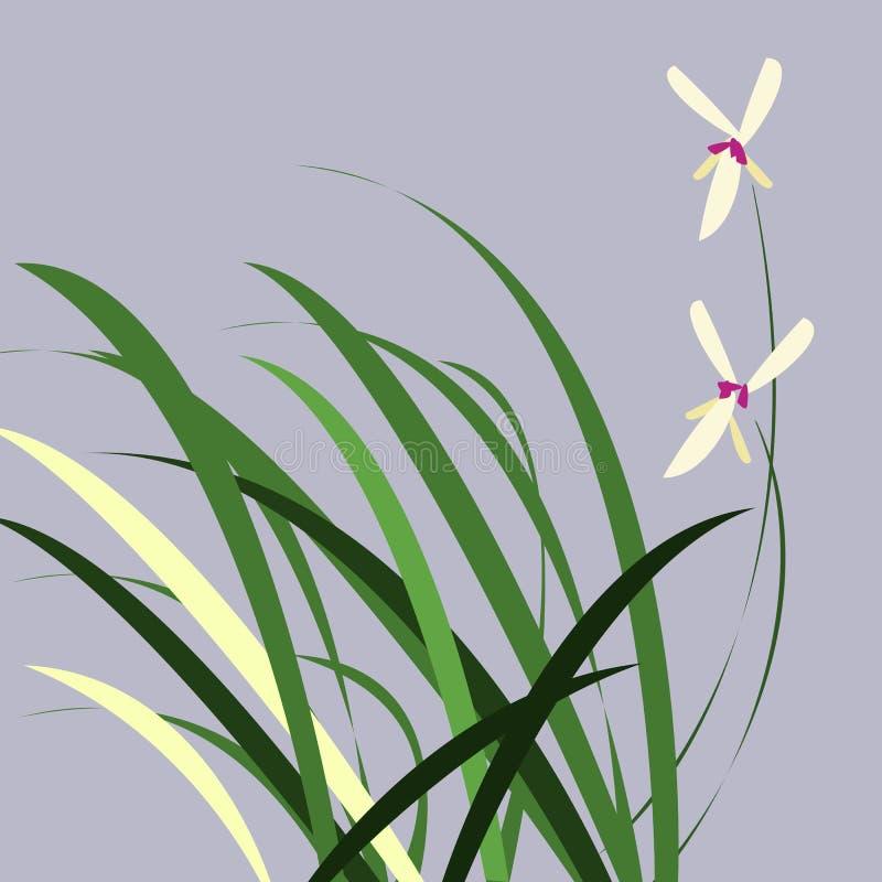ORCHIDEE MET BLADEREN stock illustratie