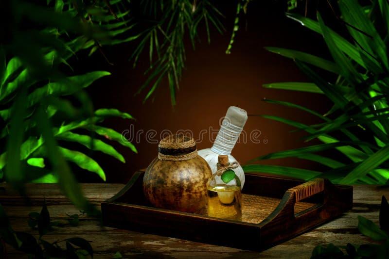 Orchidee, Steine, Palme, Wasser auf Bambushintergrund lizenzfreie stockfotos