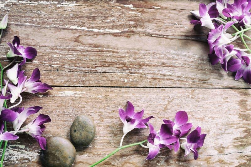 Orchideebloem op hout stock fotografie