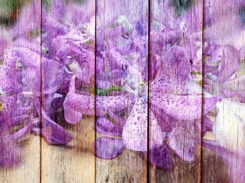 Orchideebloem op Houten textuur royalty-vrije stock afbeelding