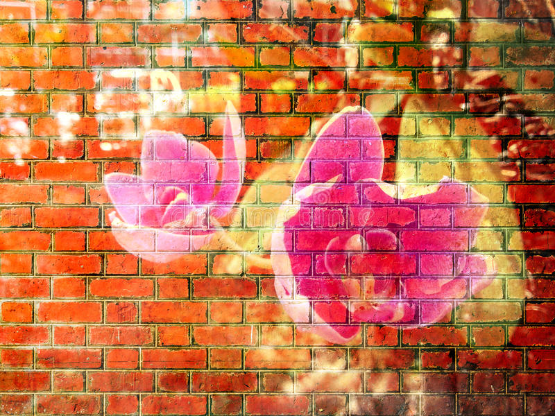Orchideebloem op Rode bakstenen muurtextuur royalty-vrije stock afbeeldingen