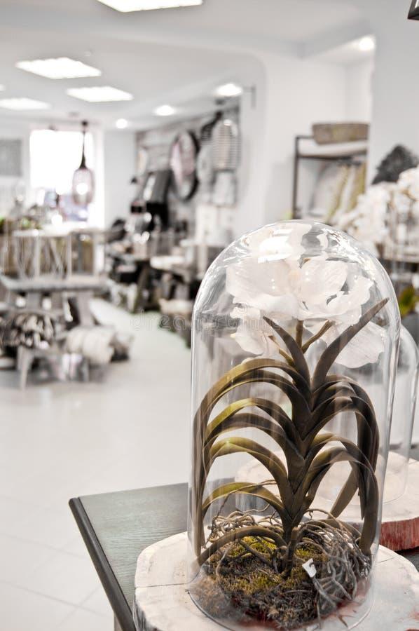 Orchideedecoratie in winkel stock afbeeldingen
