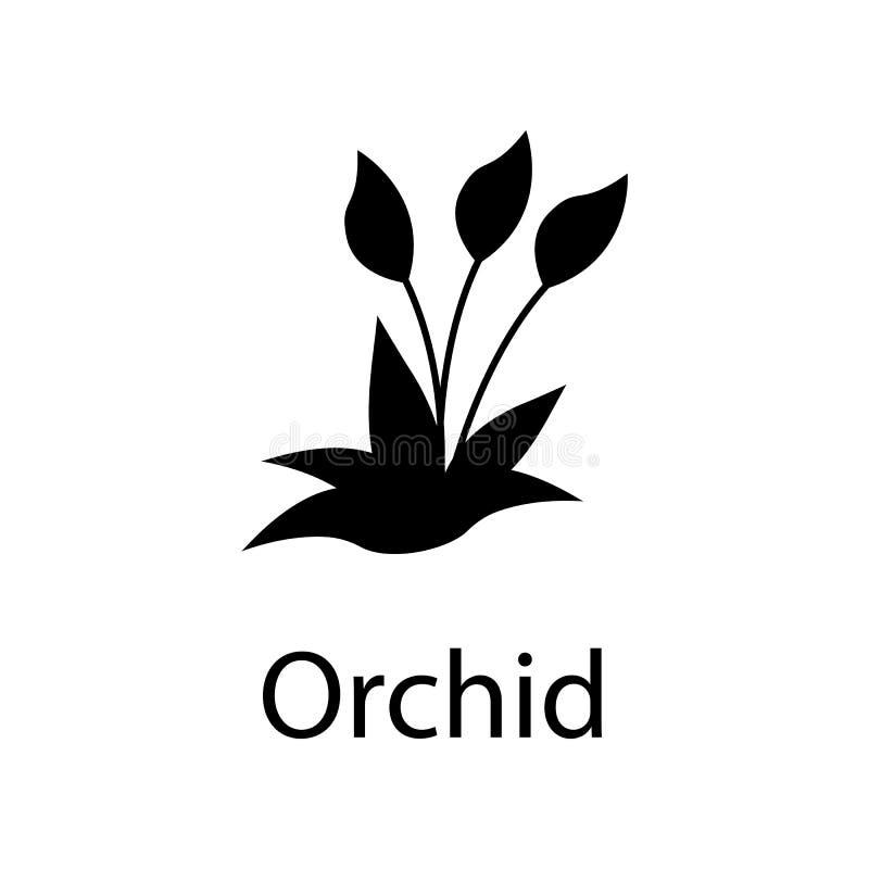 Orchideeillustratie Element van installatiepictogram voor mobiel concept en Web apps De gedetailleerde orchideeillustratie kan vo royalty-vrije illustratie