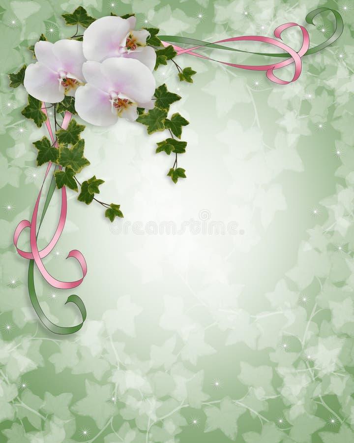 Orchideen und Efeu Hochzeitseinladung lizenzfreie abbildung