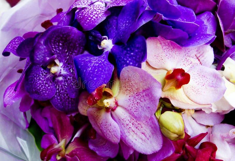 Orchideenblumenstrauß lizenzfreie stockfotografie