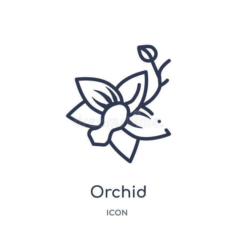 Orchideepictogram van de inzameling van het aardoverzicht Het dunne die pictogram van de lijnorchidee op witte achtergrond wordt  stock illustratie