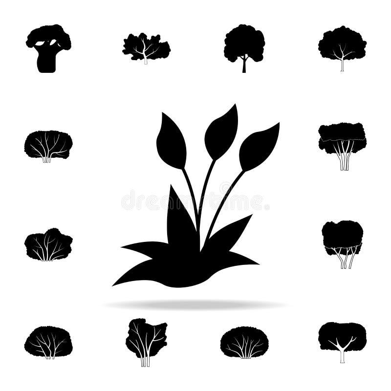 Orchideepictogram Voor Web wordt geplaatst dat en het mobiele algemene begrip van installatiespictogrammen royalty-vrije illustratie