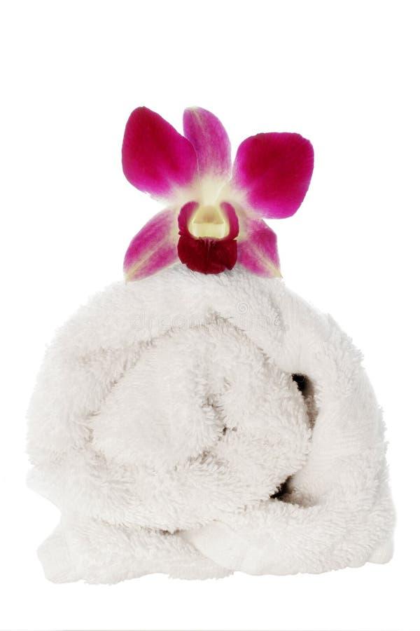 Download Orchidhandduk arkivfoto. Bild av vatten, naturligt, aromatics - 511328