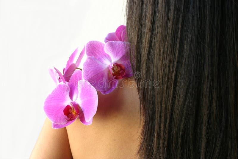 orchids θεραπεία στοκ εικόνες