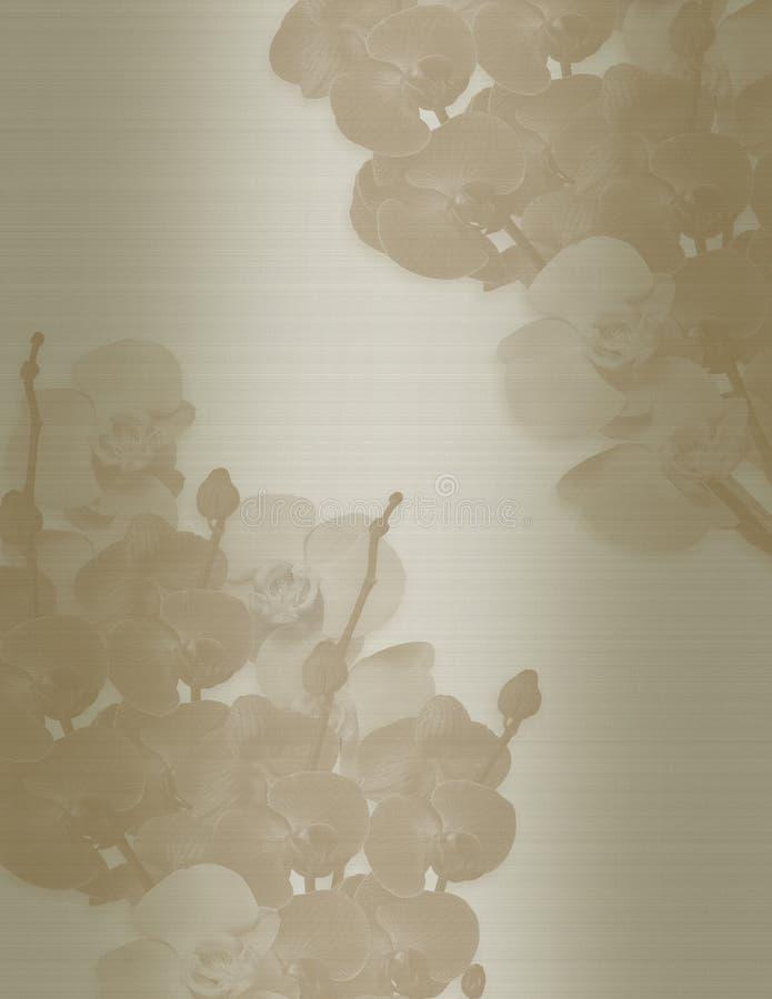 orchids πρόσκλησης γάμος σεπιών ελεύθερη απεικόνιση δικαιώματος