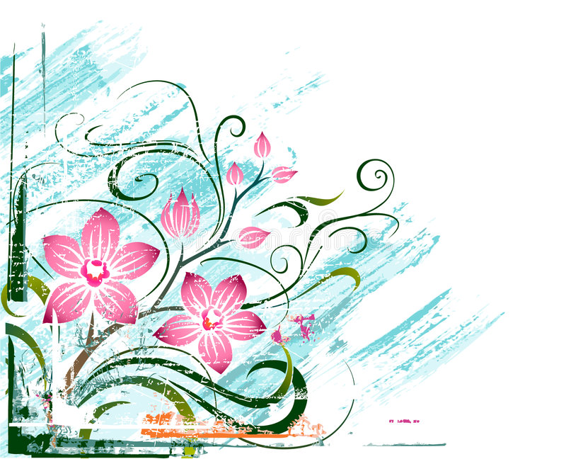 Orchids royalty free illustration