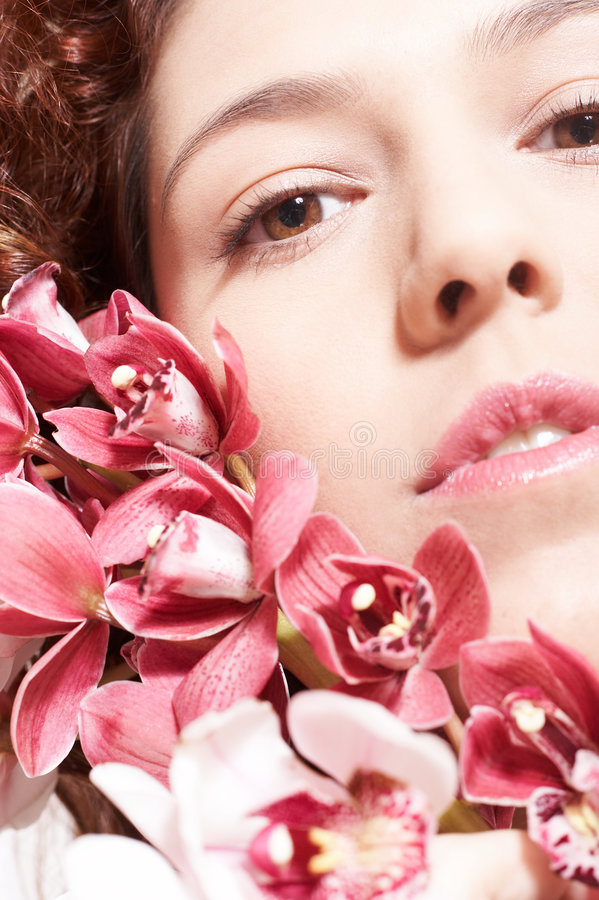 Download Orchids Stock Photo - Image: 503920