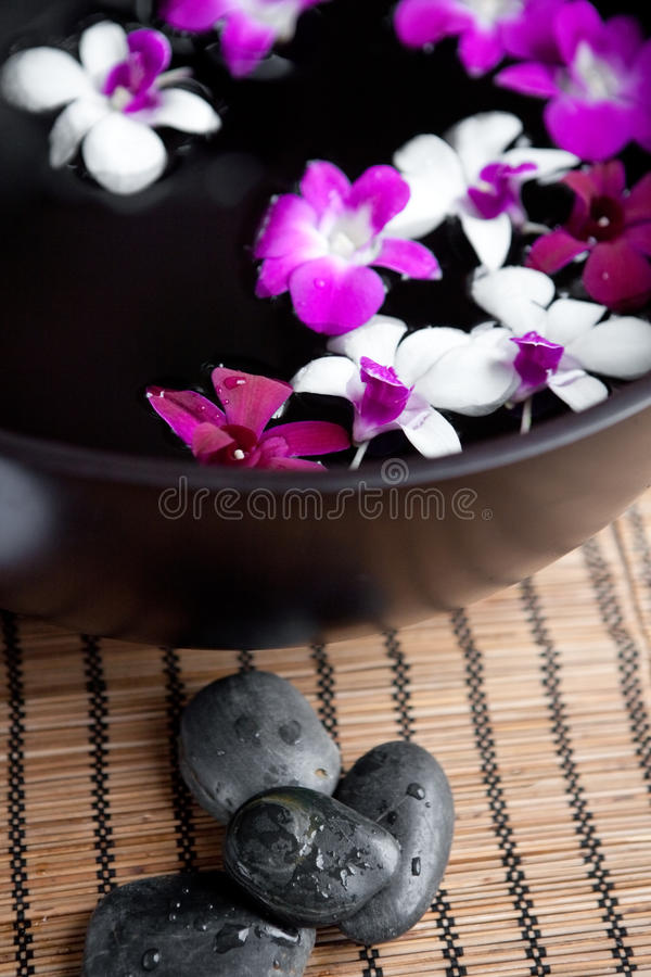 Download Orchids In Bowl For An Oriental Spa Stock Photo - Image: 18700646