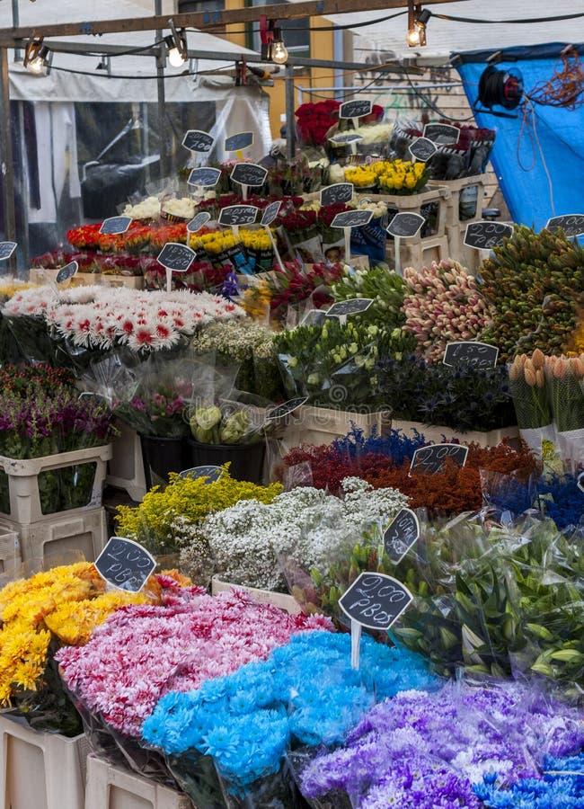 orchids för mong för marknad för kong för blommahong kok royaltyfri bild