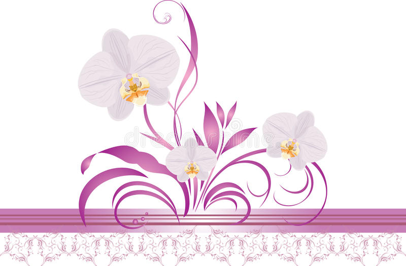 Orchids with floral ornament. Decorative border royalty free illustration