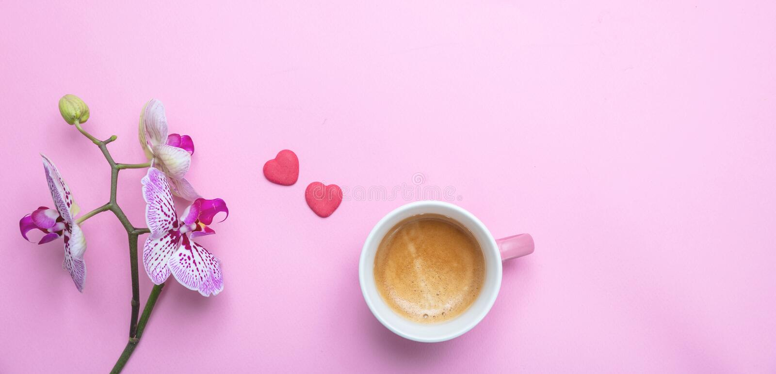Orchids flowers purple white color and a cup of coffee on pink, copy space. Women, mothers day concept. Orchids flowers purple white color and a cup of coffee stock photography
