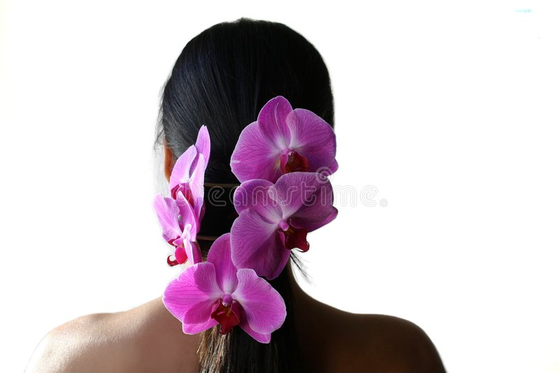 Orchids and pony tail stock photo