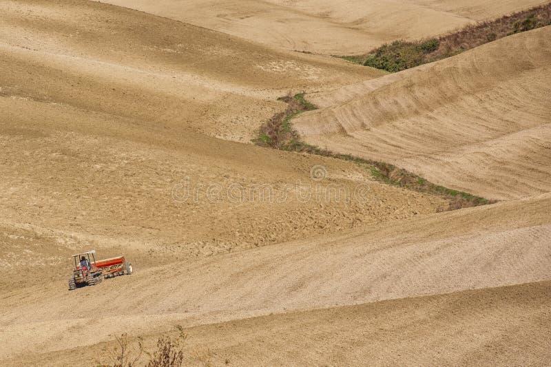 ` ORCIA САН QUIRICO D, ТОСКАНА/ИТАЛИЯ - 31-ОЕ ОКТЯБРЯ 2016: Не определенный человек на тракторе в красивом тосканском ландшафте стоковая фотография rf